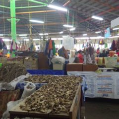vendor stalls full of raw kava root in Fiji